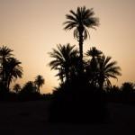 Maroc mai 2014